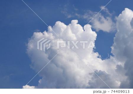 青空にわきあがる白い雲(積雲、積乱雲) 74409013