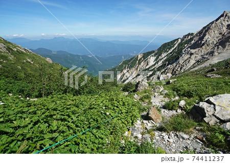 真夏の白馬岳 2500メートル付近の景観と展望 74411237