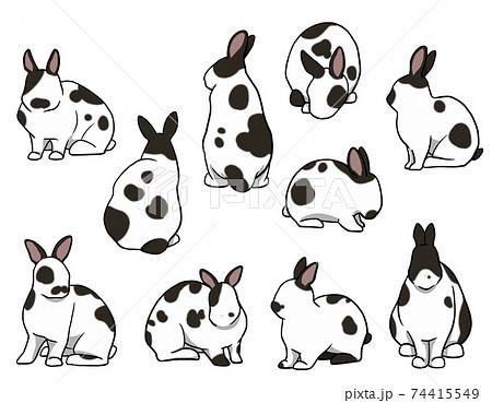 おすわりウサギ 短耳 ブロークンセット 74415549