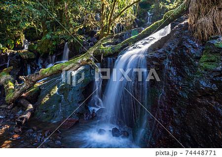 冬の清流菊池渓谷に流れ落ちる滝の風景 74448771