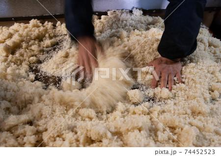酒作り、酒米に麹をまぶしているところ 74452523