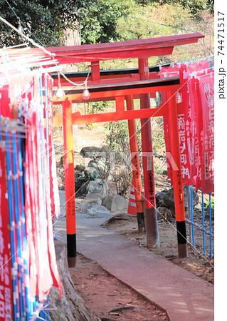 <茨城県>筑波山 筑波山神社の鳥居 74471517