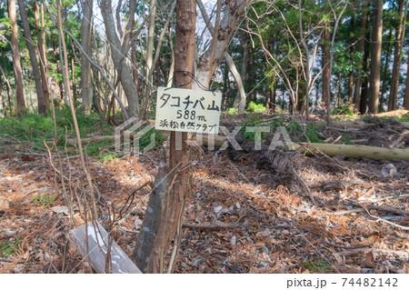 タコチバの山頂(シダンゴ山・宮地山ハイキングコース) 74482142