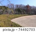西神中央公園の冬景色葉っぱ少ない 74492703
