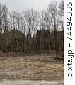冬の広場と整列した落葉樹 74494335
