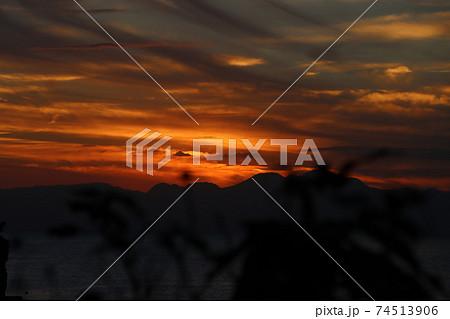 江ノ島で夕方に木の葉から望む伊豆半島シルエットとオレンジ色の夕日 74513906