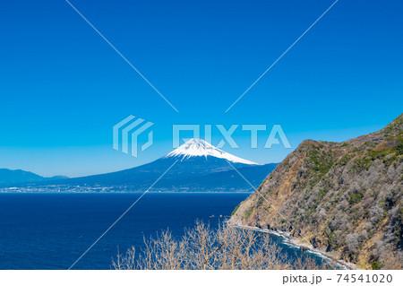 静岡県沼津市井田 煌めきの丘から見た富士山 74541020