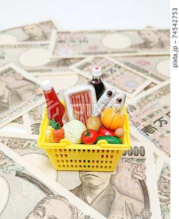 家計費における食費割合 エンゲル係数 74542753