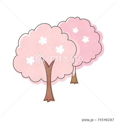 桜の木  2本 74546287