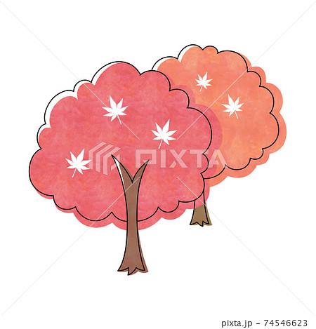 赤色とオレンジ色のモミジの木 74546623