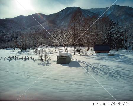 冬の雪原 長野県白馬村(ドローンによる空撮) 74546775