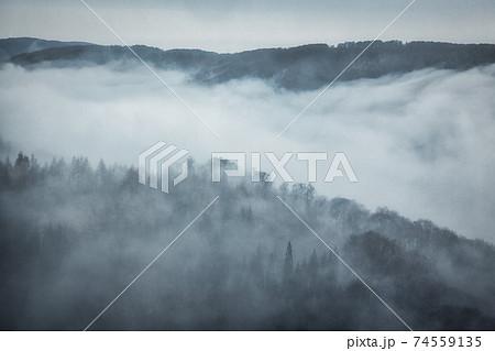 霧と雲に覆われる渓谷 74559135