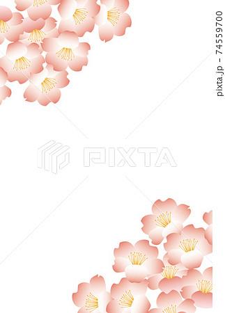 満開の桜の花-和風ピンクフレーム-縦 74559700