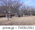 西神中央公園  神戸市 西区 公園 冬 74561561