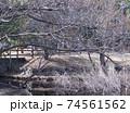西神中央公園  神戸市 西区 公園 冬 74561562
