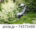 庭の中の妖精の彫像 クローズアップ 74573466