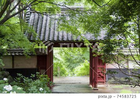 幸田町本光寺山門(本堂側から山門を見る) 74583725