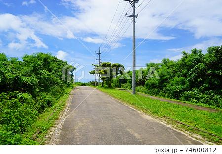 青空の下で自転車で走りたい緑に囲まれた道 74600812