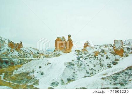 雪が積もるデブレント渓谷のラクダ岩 74601229