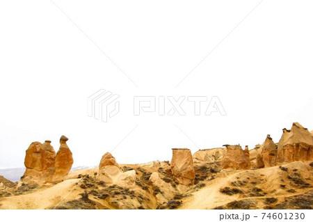 渓谷を眺めるラクダ岩 74601230