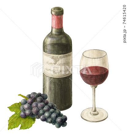 ブドウの添えられた赤ワイン 手描き水彩色えんぴつ画 74615420