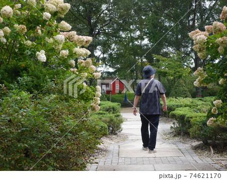 整備された庭を散策する男性(後ろ姿) 74621170