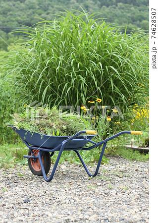 一輪車に積まれた草、ガーデニング 74628507