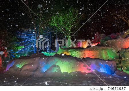 【氷点下の森】ライトアップされた氷の芸術 74651087