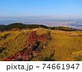秋の金剛生駒紀泉国定公園「大和葛城山」 74661947