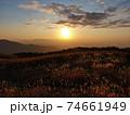 秋の金剛生駒紀泉国定公園「大和葛城山」 74661949
