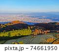 秋の金剛生駒紀泉国定公園「大和葛城山」 74661950