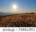 秋の金剛生駒紀泉国定公園「大和葛城山」 74661951
