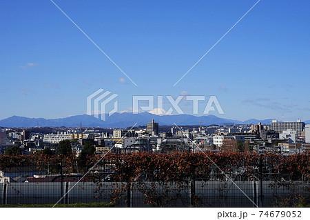 2月 世田谷635富士山・大山(成城の不動橋展望・国分寺崖線上) 74679052