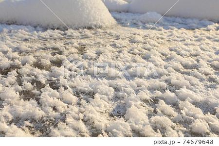 【北海道美瑛町の冬】朝日を浴びるフロストフラワー 1月 74679648