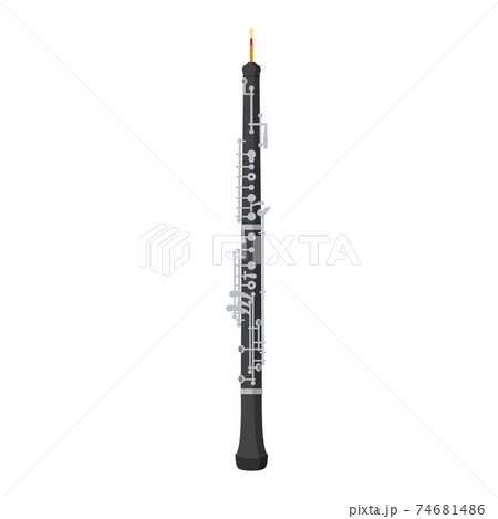 Vector illustration of an oboe in cartoon style isolated on white background 74681486