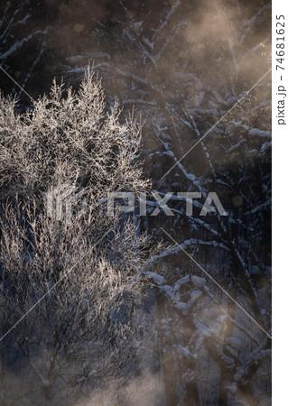 【北海道富良野の冬】霧氷と毛嵐 1月 74681625