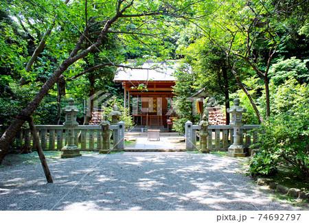 【神奈川】初夏の鎌倉 葛原岡神社の社殿と新緑 74692797