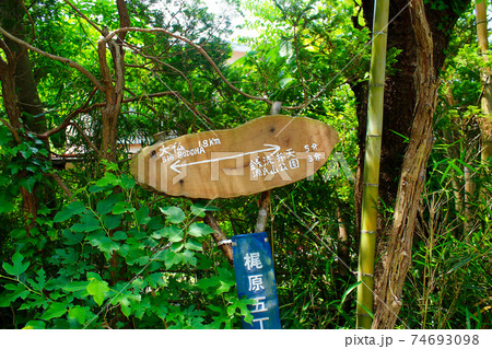 【神奈川】初夏の鎌倉 葛原岡・大仏ハイキングコースの手書きの看板 74693098