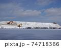札幌の雪堆積場 74718366