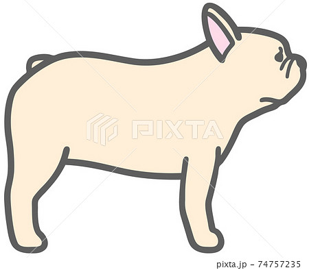 横向きのフレンチブルドッグの犬のイラスト 74757235