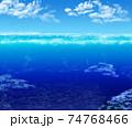 カモメが集まる海 74768466