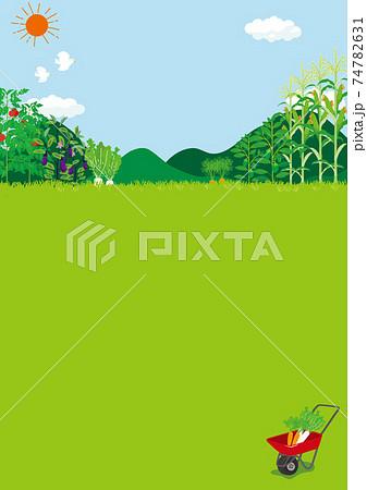 畑の風景 イラスト 74782631