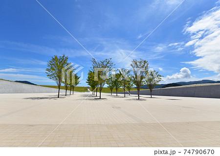 2020年夏の陸前高田市の風景 74790670