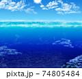 海の世界は広い 74805484