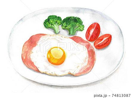 ハムエッグにブロッコリーとトマトを付け合わせた一皿(水彩イラスト) 74813087