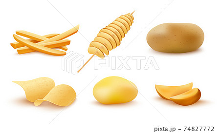 Cooked potato snacks for fast food menu a vector realistic 3d illustrations. 74827772