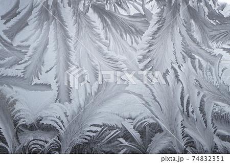 窓霜模様 74832351