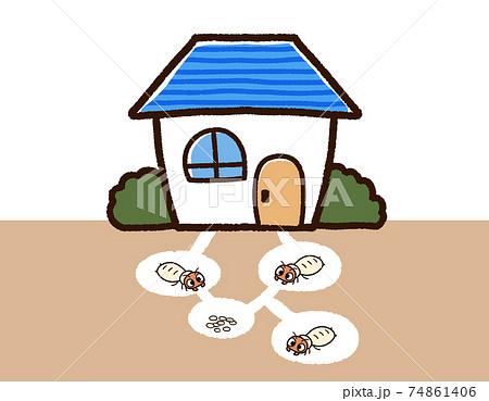 家とシロアリの巣 74861406