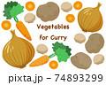 手描き風カレー用野菜イラスト 74893299