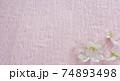 早春の桜の花 74893498